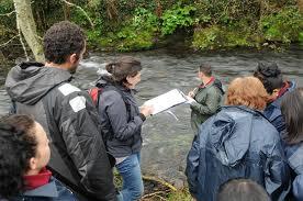 proyecto rios