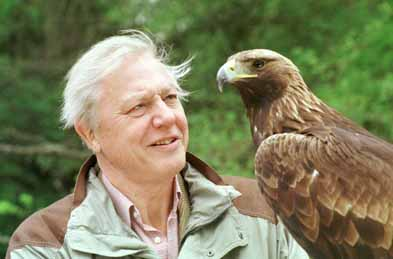David Attenborough 1