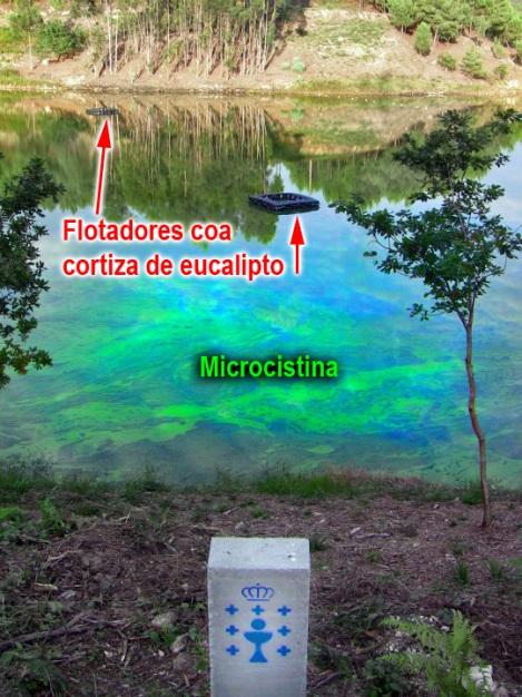 agua potable galicia