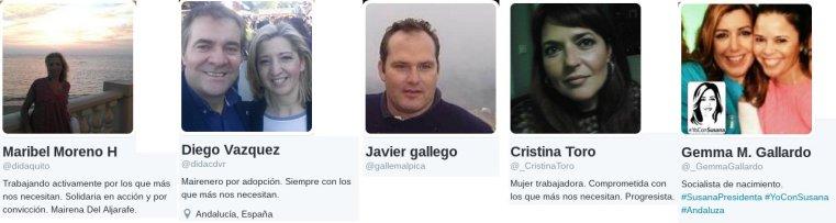 perfiles_cedidos