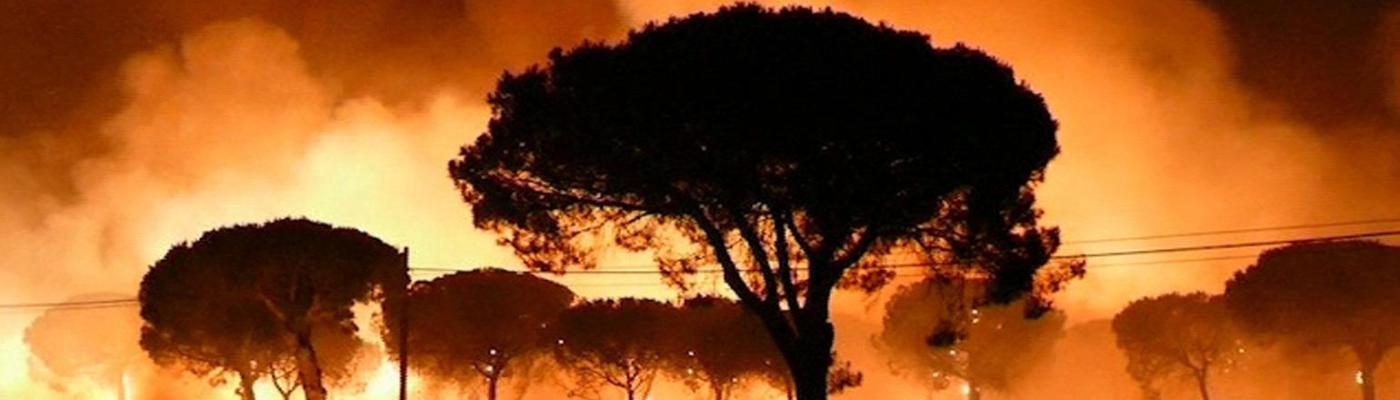 Susana Díaz Cae (60) – El incendio de Huelva comenzó en los despachos –  Posos de anarquía d0ea32c1ddaf