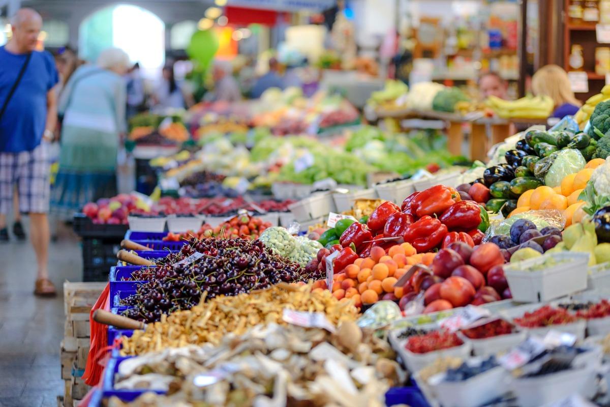 SALUD Y NUTRICIÓN: ¿Qué es la seguridad alimentaria?